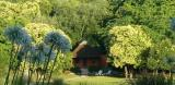 Beautiful cottage in Colonia